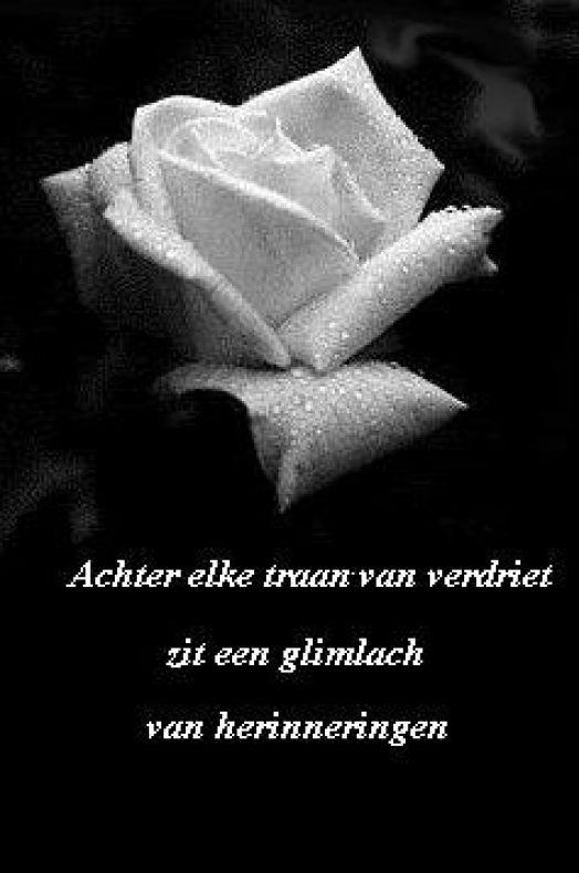 Super Ter herinnering aan Astrid Aagten - van Krimpen   Memori.nl BA-27